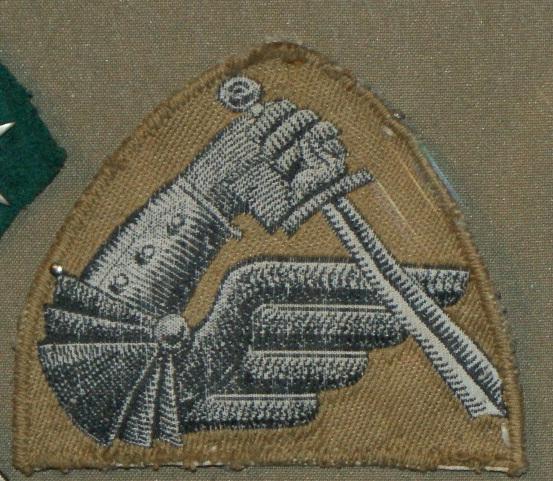 Oznaka rozpoznawcza 2. Brygady Pancernej.