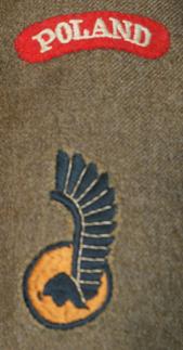 Oznaka rozpoznawcza na rękaw 1. Dywizji Pancernej