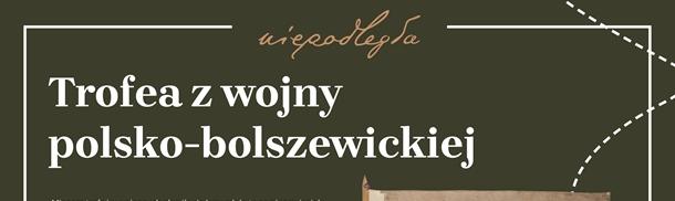 Bitwa Warszawska. Stulecie Zwycięstwa.